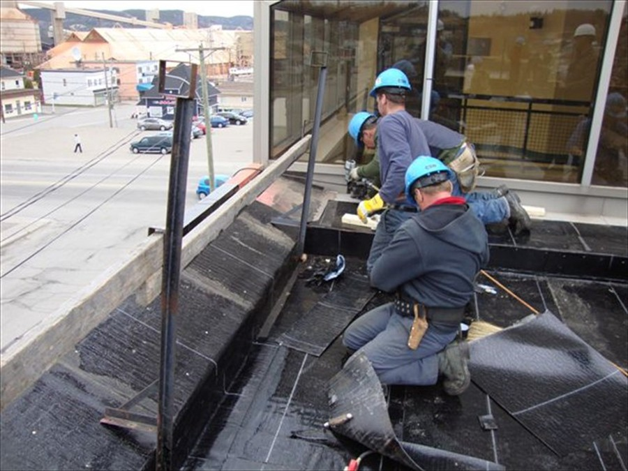 flat roof workers